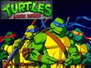 ��� Turtles double damage
